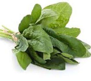 fresh-vegetables
