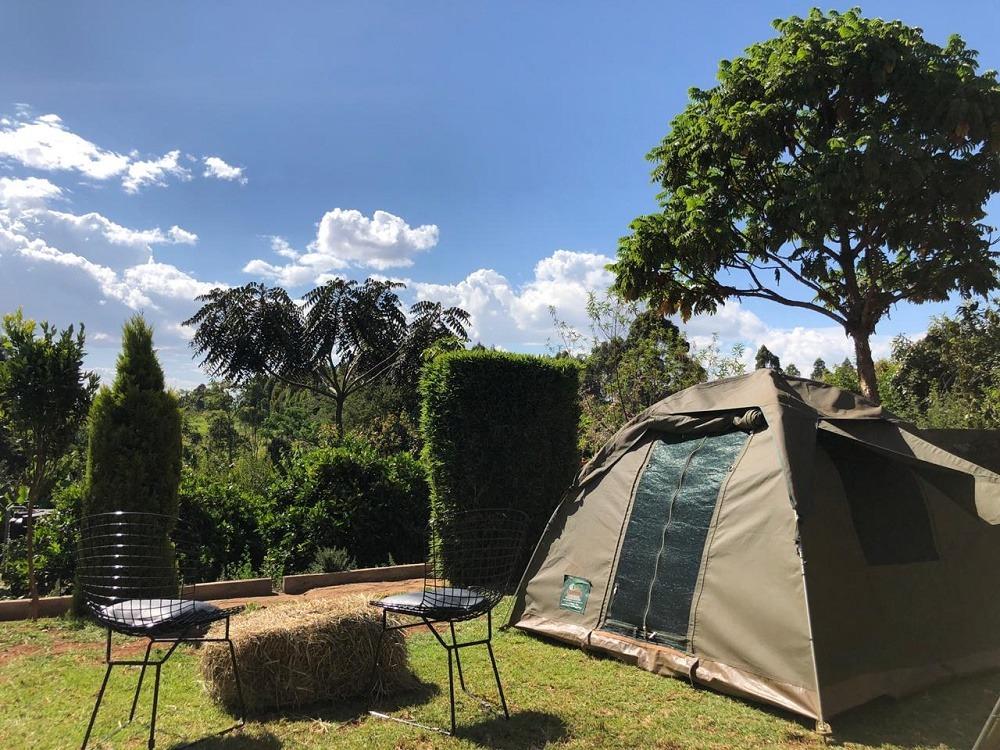 Lesioi Farm Stay Camping 1