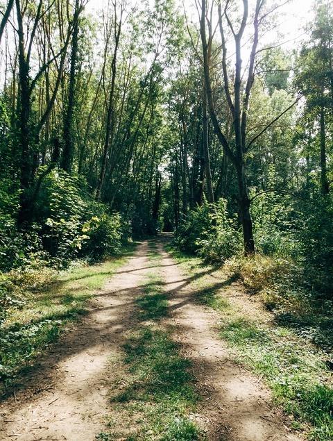 Hiking Trips Lesioi Farm Stay
